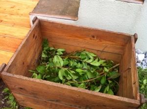 Damit ich die Kiste nicht komplett füllen muss und die Erde mehr Luft zum Atmen hat, hab ich sie zur Hälfte mit Ästen gefüllt.