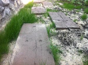 Grasinseln statt Grasfläche soll es nun werden.