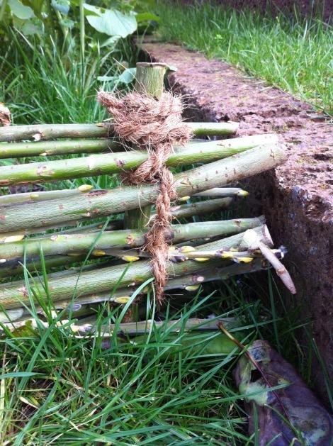 Zum Schluss wird mit Ast- und Gartenschere fassoniert. Ränder zurecht gestutzt und hervorschauende Zweigerl gekappt.