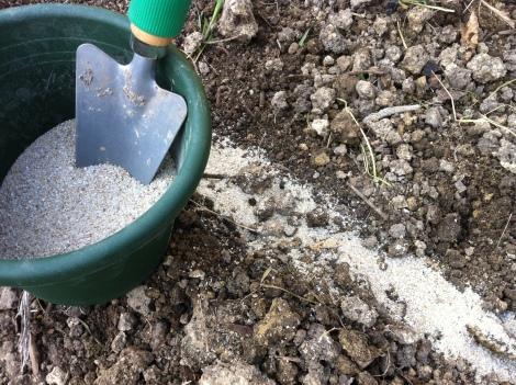 Also rein mit dem Sand und darauf die Saat.