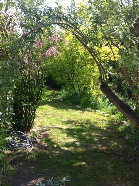 Ja kann es denn einen schöneren Eingang in einen Garten geben? In diesen nicht.