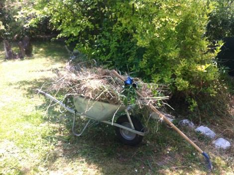 Eine ganze Fuhre Heu wird eingefahren, nachdem die Pflanzen getrocknet sind.