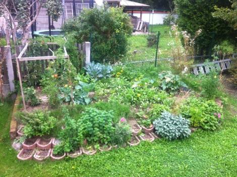 Und letzte Woche. Die Ernte war eher nicht sooo üppig.