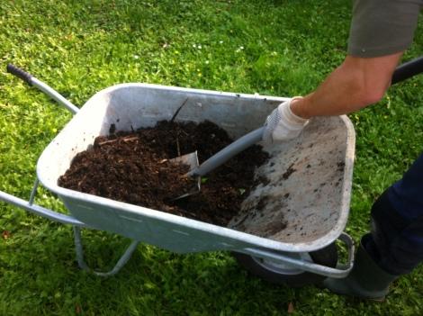 Darauf verteilt –in diesem Fall das fleißige Gartenhelferlein und nicht ich –ordentlich Kompost.