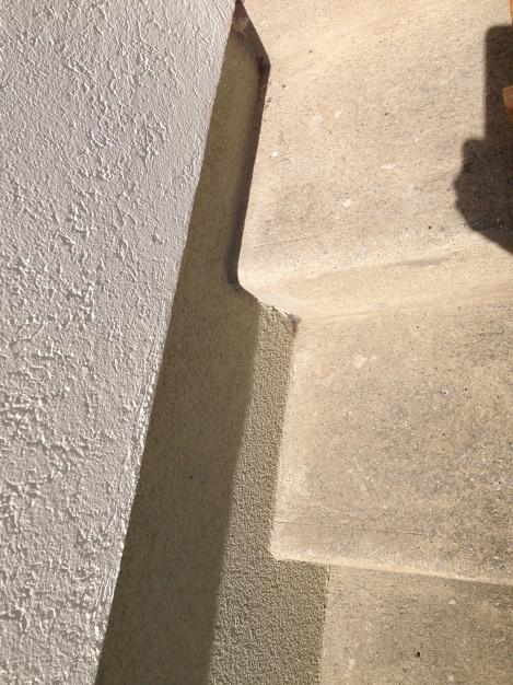 Ein weiterer Ort, an dem sich die Ameisen ihren Bau bauen wollten: an der Eingangsstiege.